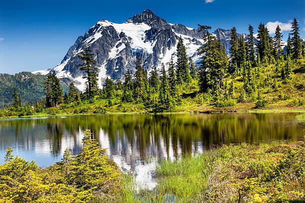 Lago Picture Evergreens Monte Shuksan Washington, EUA - foto de acervo