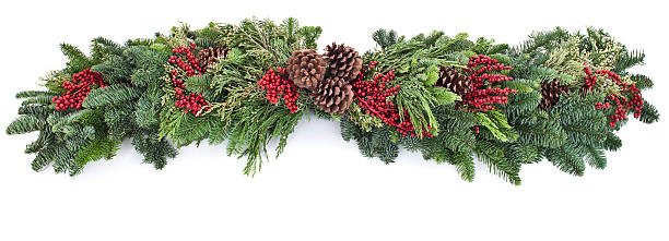 a picture of a garland with red and green leaves - garland stock photos and pictures