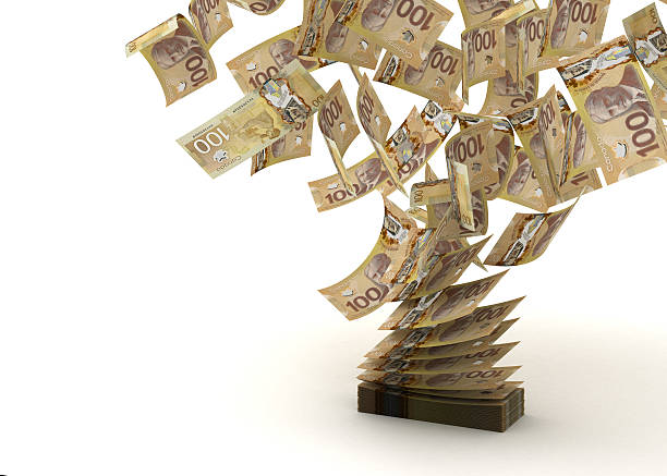 A picture of a lot of different Canadian dollars  stock photo