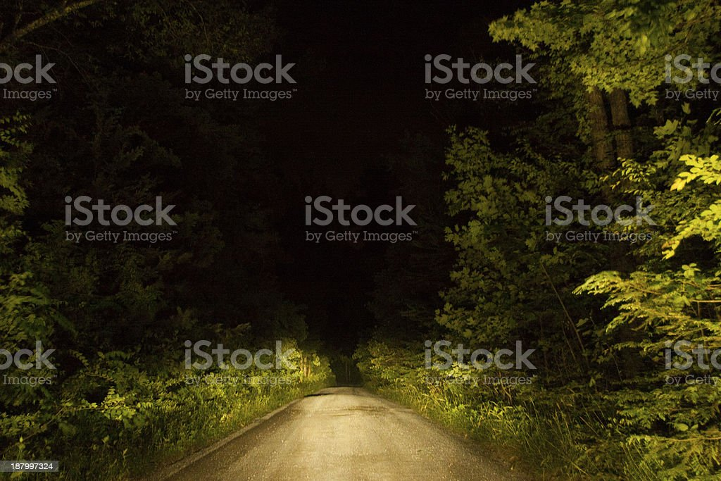A picture of a road in the forest stock photo