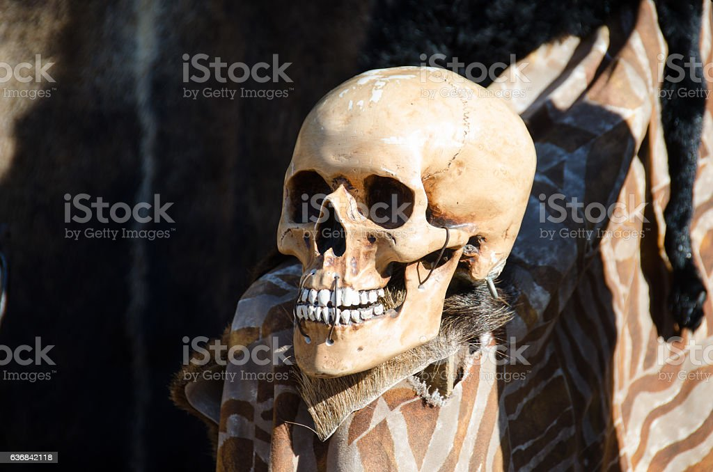 Picture of a skull stock photo