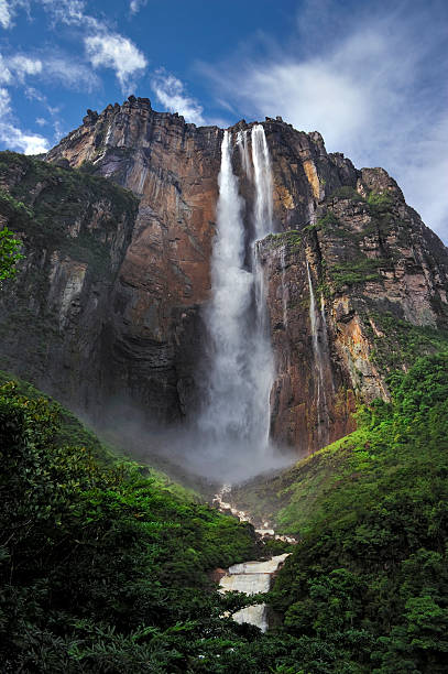 picture of angel falls, taken from below looking up - venezuela stock photos and pictures