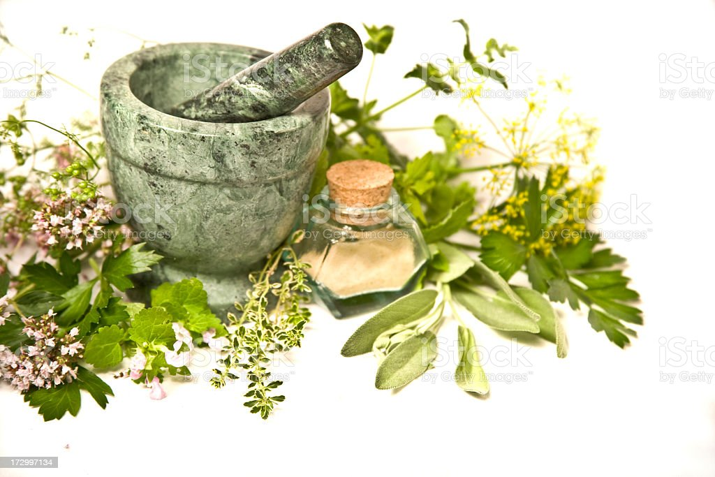 Picture of different herbs on a white background royalty-free stock photo