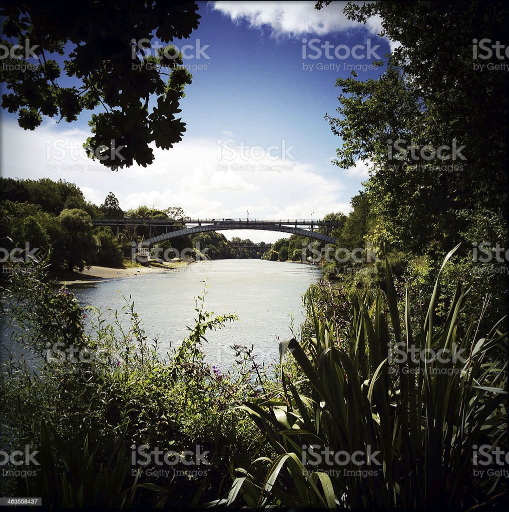 Picture of greenery overlooking a lake with a bridge stock photo