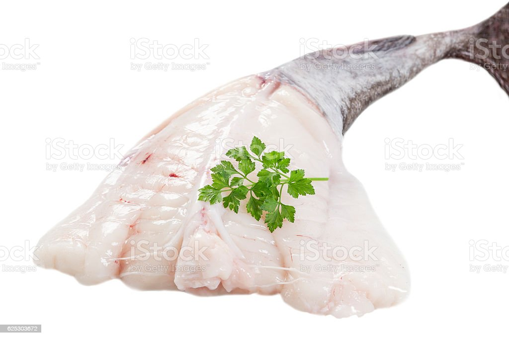 picture of monkfish in front  white background stock photo