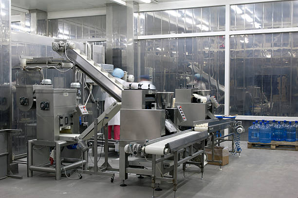 Picture of production line in the food factory Automated production line in modern food factory. Ravioli production. People working. food warehouse stock pictures, royalty-free photos & images