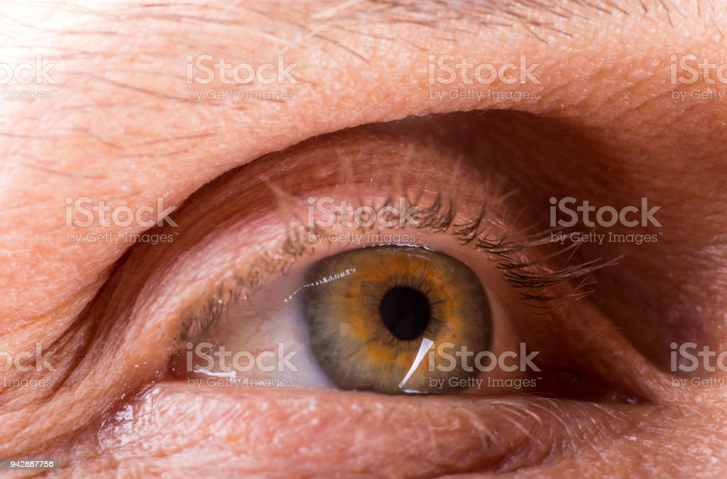 Picture of the right eye of a mature man, close-up stock photo