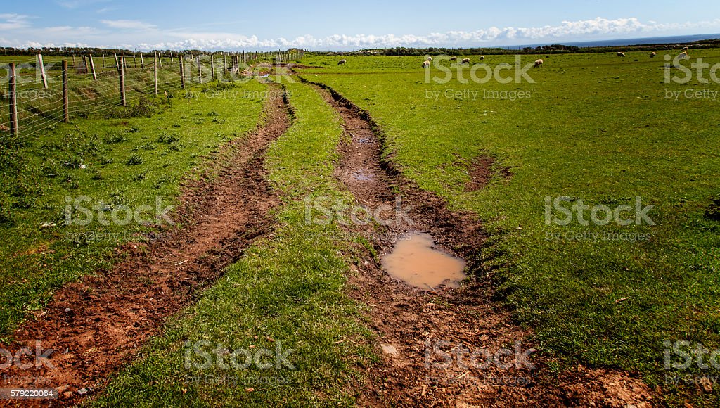 picture of tracks in field stock photo