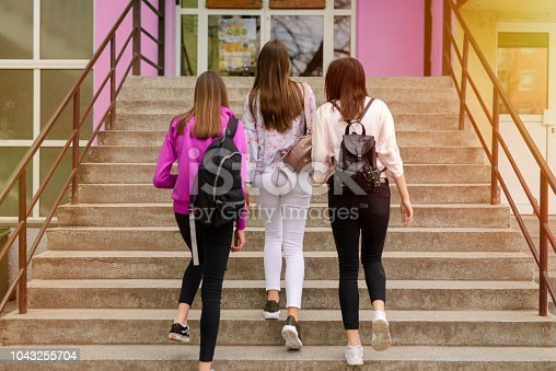 istock Picture of tree young school girls entering school building. 1043255704