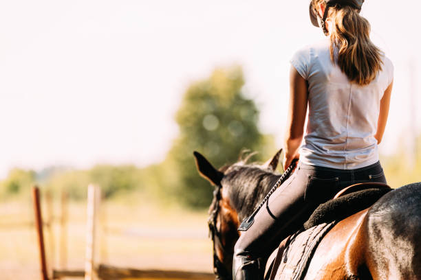 picture of young pretty girl riding horse - horse stock pictures, royalty-free photos & images