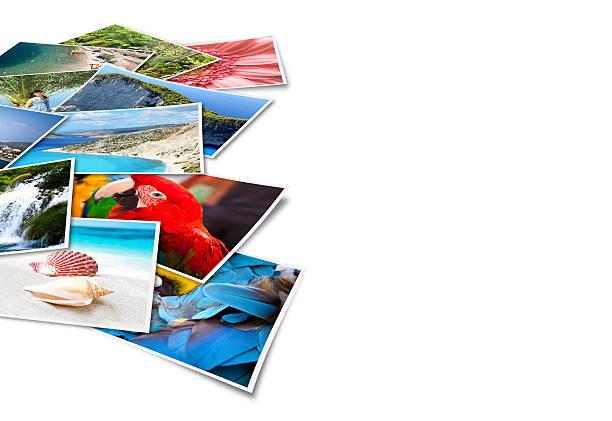 bilder von holiday. - druckerzeugnis stock-fotos und bilder