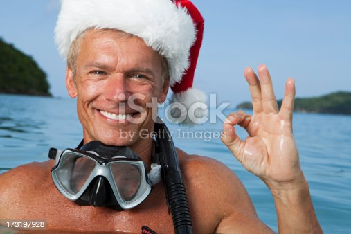 istock Pictures of Real Christmas in the Caribbean is OK 173197928