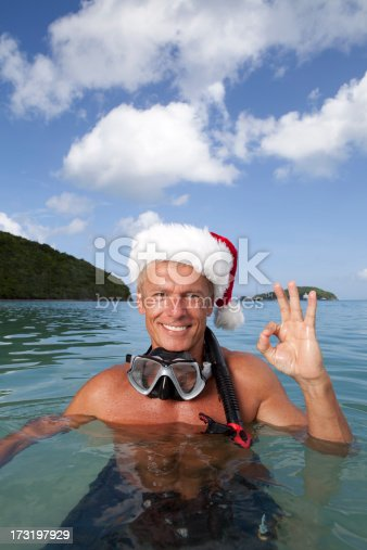 istock Pictures of Real Christmas in the Caribbean is OK 173197929