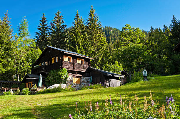 Picturesque Alpine chalet green summer mountain forest