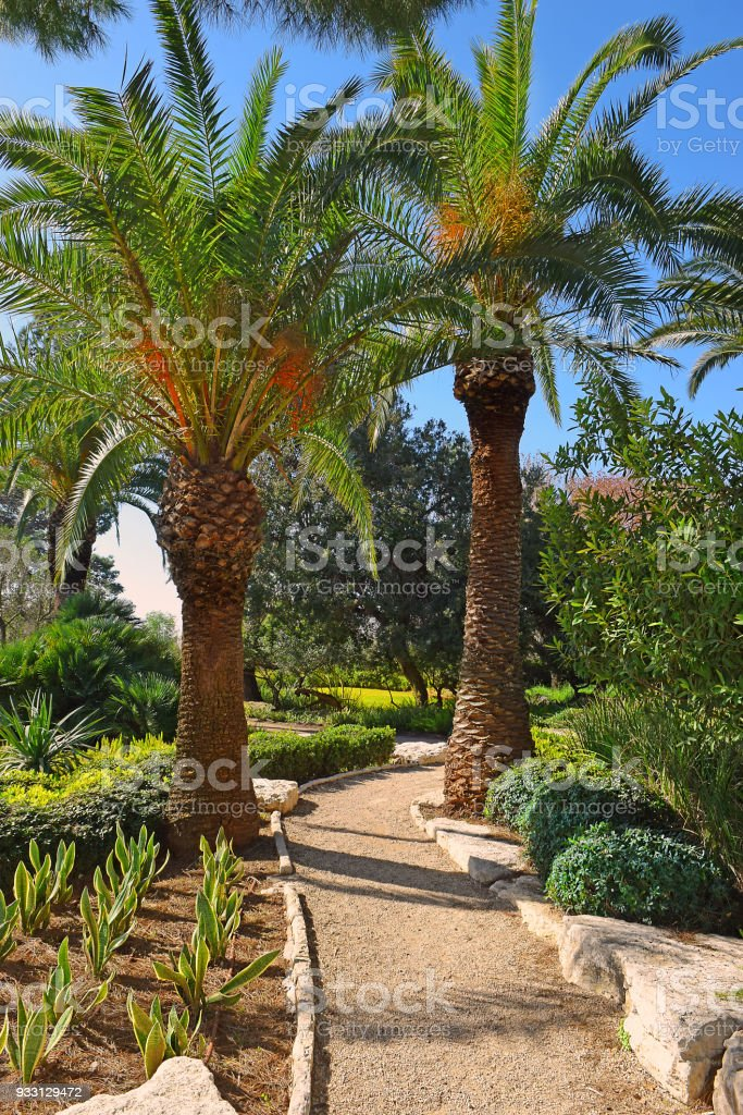 pitoresco canto no parque Ramat Hanadiv, Israel - foto de acervo