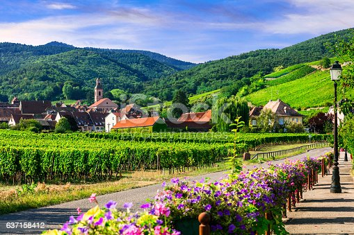 925850210 istock photo Picturesque countryside of Alsace region- famous