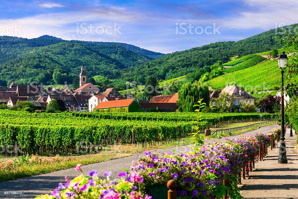 Picturesque countryside of Alsace region- famous 'vine route' France stock photo