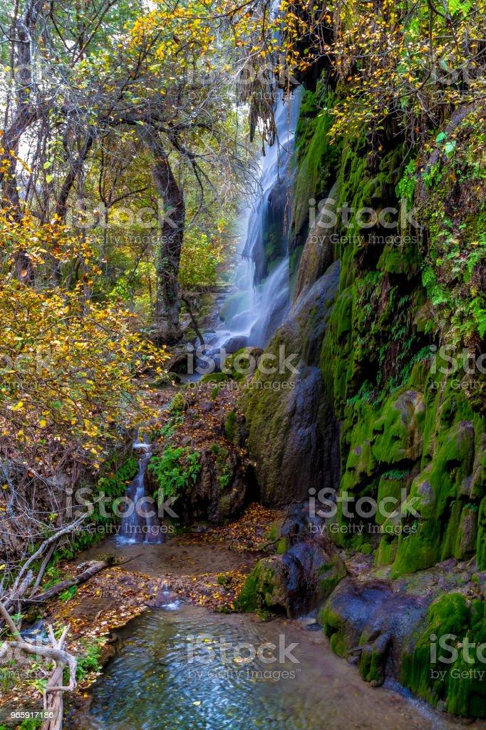 Pittoreske Gorman Falls in Texas omringd door heldere Fall gebladerte en groene mos. - Royalty-free Antiek - Toestand Stockfoto