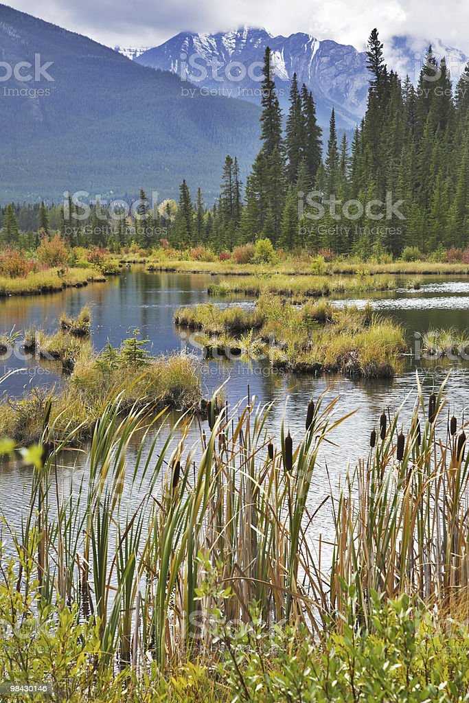 Picturesque lake with small islets royalty-free stock photo