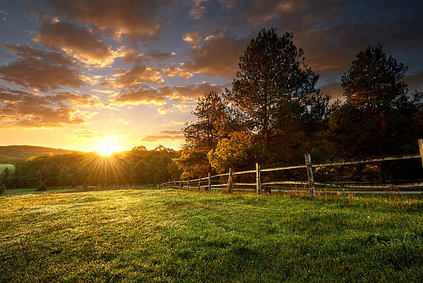 Picturesque landscape, fenced ranch at sunrise Picturesque landscape, fenced ranch at sunrise ranch stock pictures, royalty-free photos & images