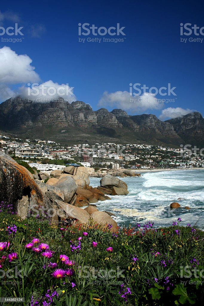 A picturesque landscape of rocks and flowers stock photo