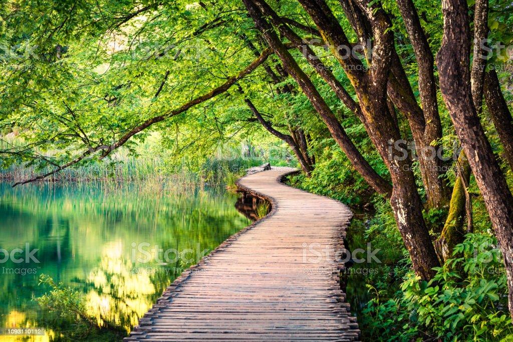Malerische Morgen im Nationalpark Plitvice. Bunter Frühling Szene des grünen Waldes mit reinem Wassersee. Blick auf die tolle Landschaft von Kroatien, Europa. Schönheit der Natur Konzept Hintergrund. – Foto