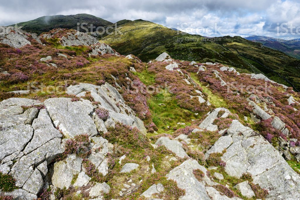 Picturesque Mountain Moorland,  Barmouth, Wales stock photo