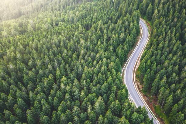 carretera de montaña pintoresca - vía fotografías e imágenes de stock