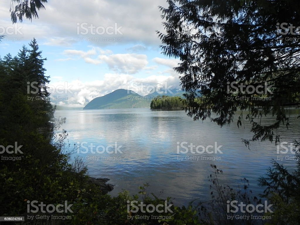 Picturesque Ocean View Through the Trees stock photo