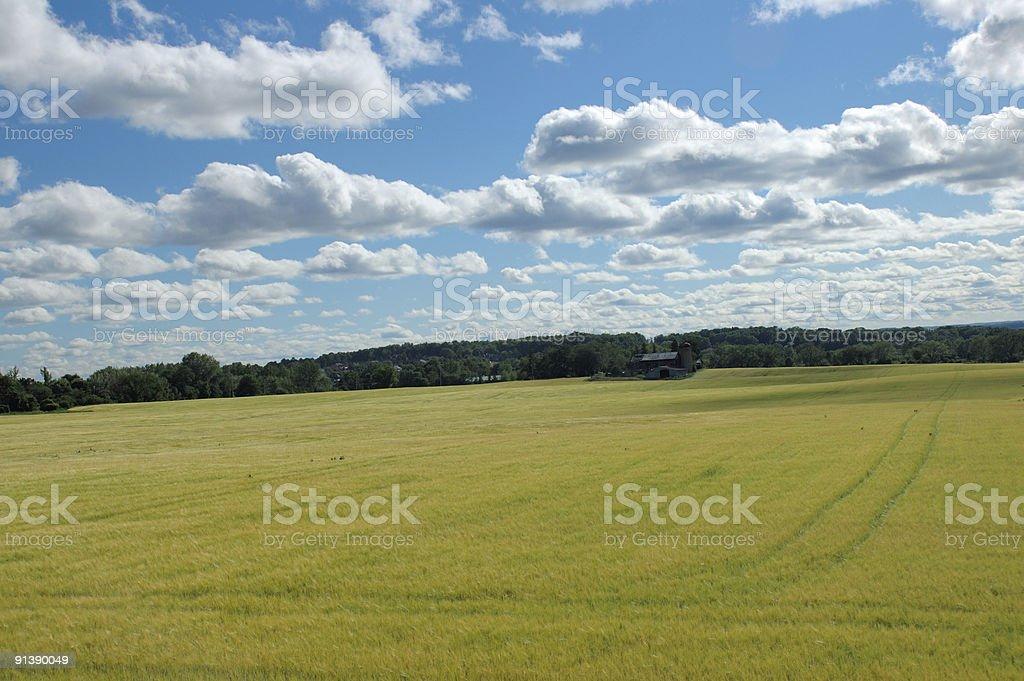 Picturesque Ontario countryside stock photo