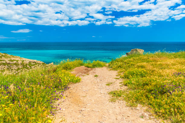 Picturesque road to the sea coast. Beautiful landscape with turquoise water, deep blue sky with clouds, grass and blooming flowers stock photo