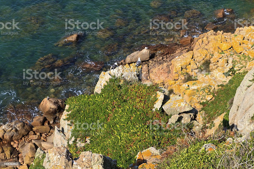 Picturesque rocky coast, Jersey, Channel Islands stock photo