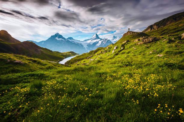 Picturesque scene. Location Swiss alps, Bernese Oberland, Grindelwald, Europe.