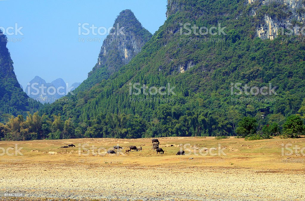 picturesque scenery on the Li River, Guangxi Province, Guilin stock photo