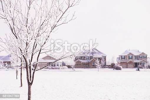 Picturesque snow storm with trees and homes