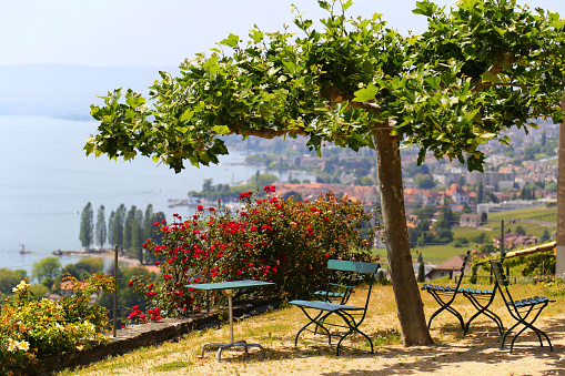 Picturesque terrace with view on vineyards near Lake Geneva, Switzerland
