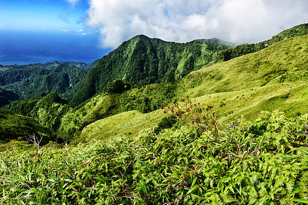 Picturesque view from Mount Pelee in Martinique stock photo