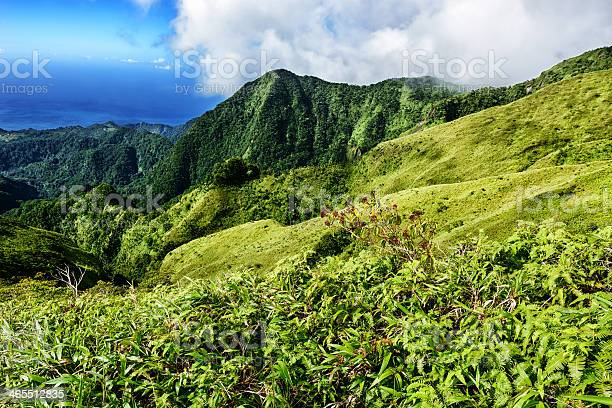 Picturesque View From Mount Pelee In Martinique Stock Photo - Download Image Now