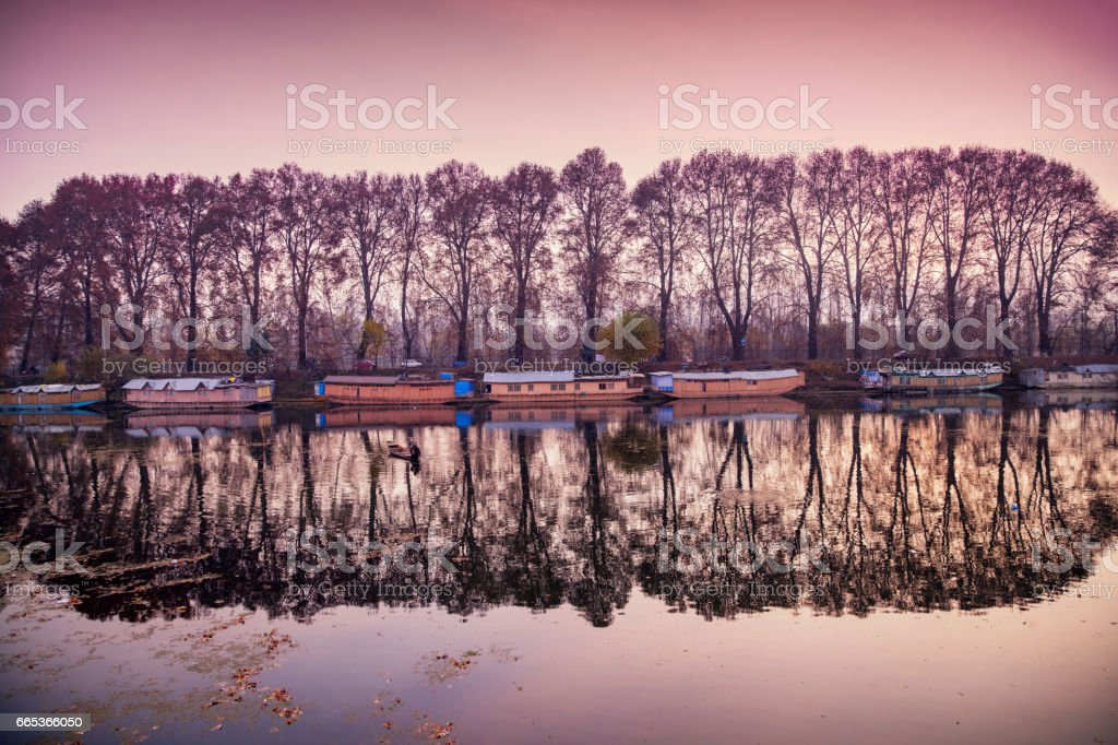 A picturesque view of reflection of houseboats and trees on Dal Lake in Srinagar stock photo