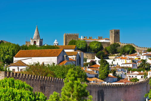 A picturesque view of the houses and a castle in Obidos
