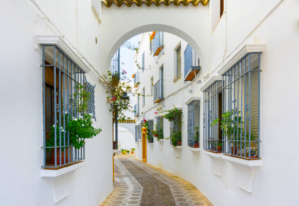 Picturesque white street of Cordoba. Typical andalusian white houses in Southern Spain Picturesque white street of Cordoba. Typical andalusian white houses in Southern Spain.Picturesque white street of Cordoba. Typical andalusian white houses in Southern Spain. cordoba spain stock pictures, royalty-free photos & images