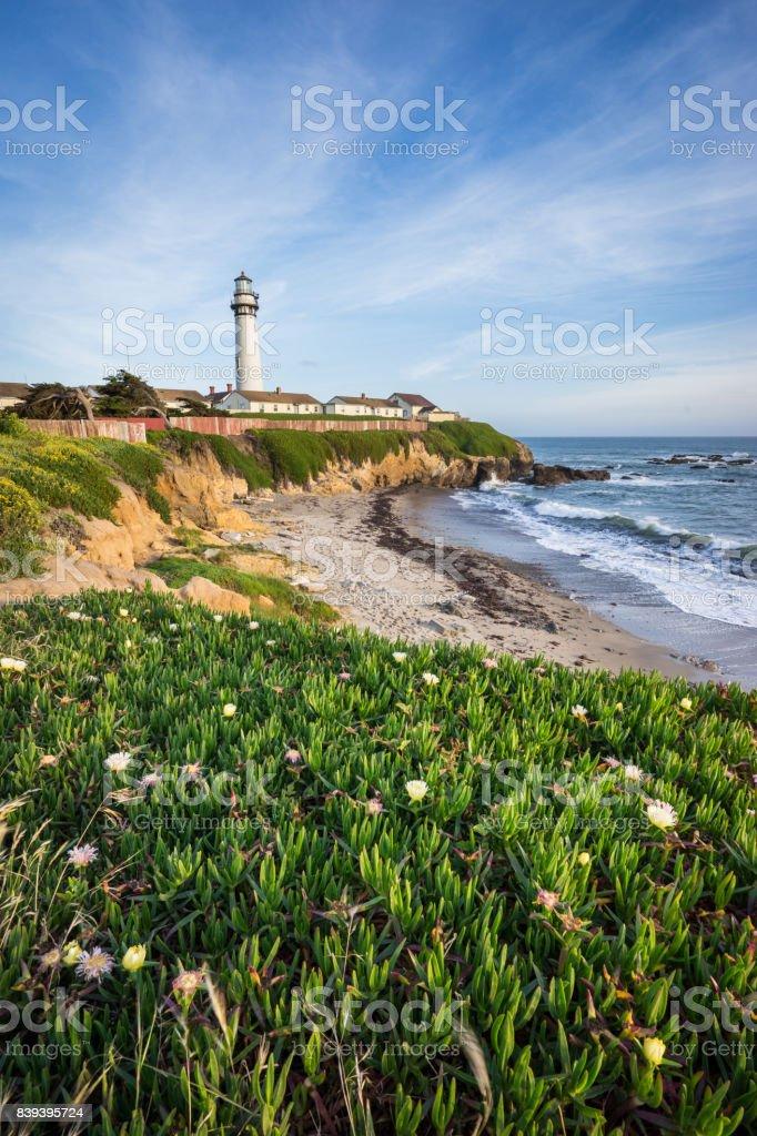 Pidgeon Point Lighthouse stock photo