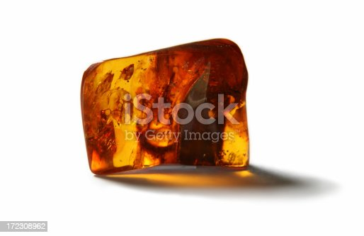Large piece of polished Baltic Sea amber with the insects inside on the white backgroundAmber Lightbox
