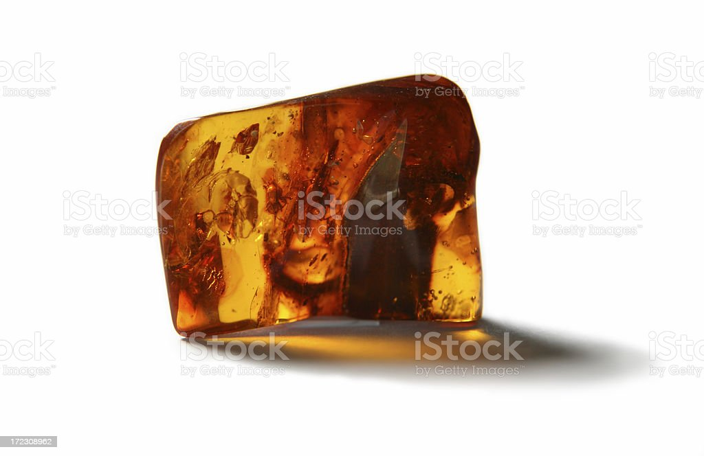 Piece of amber with insects stock photo