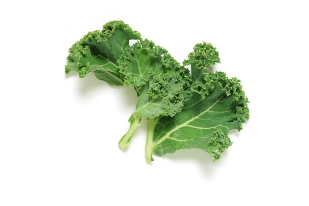 Piece of fresh Kale on white background, shot from above Piece of fresh Kale on white background, shot from above kale stock pictures, royalty-free photos & images
