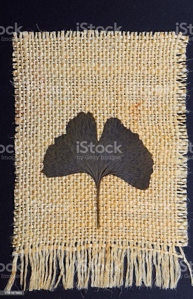 Piece of jute with ginkgo biloba leaf royalty-free stock photo