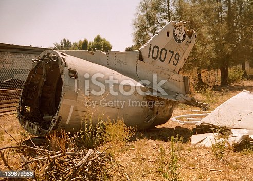 istock Piece Of Tail 139679966