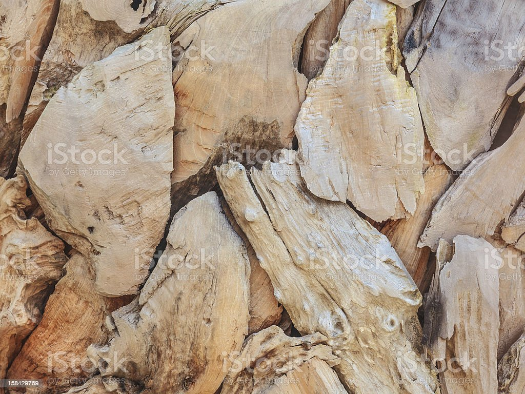 Pieces of beach driftwood royalty-free stock photo