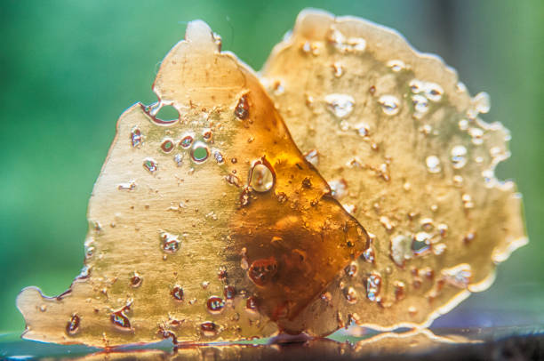 Pieces of cannabis oil concentrate aka shatter against green stock photo