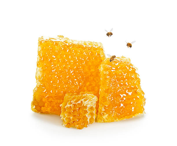 Pieces of Honeycomb with Bees Flying Around stock photo